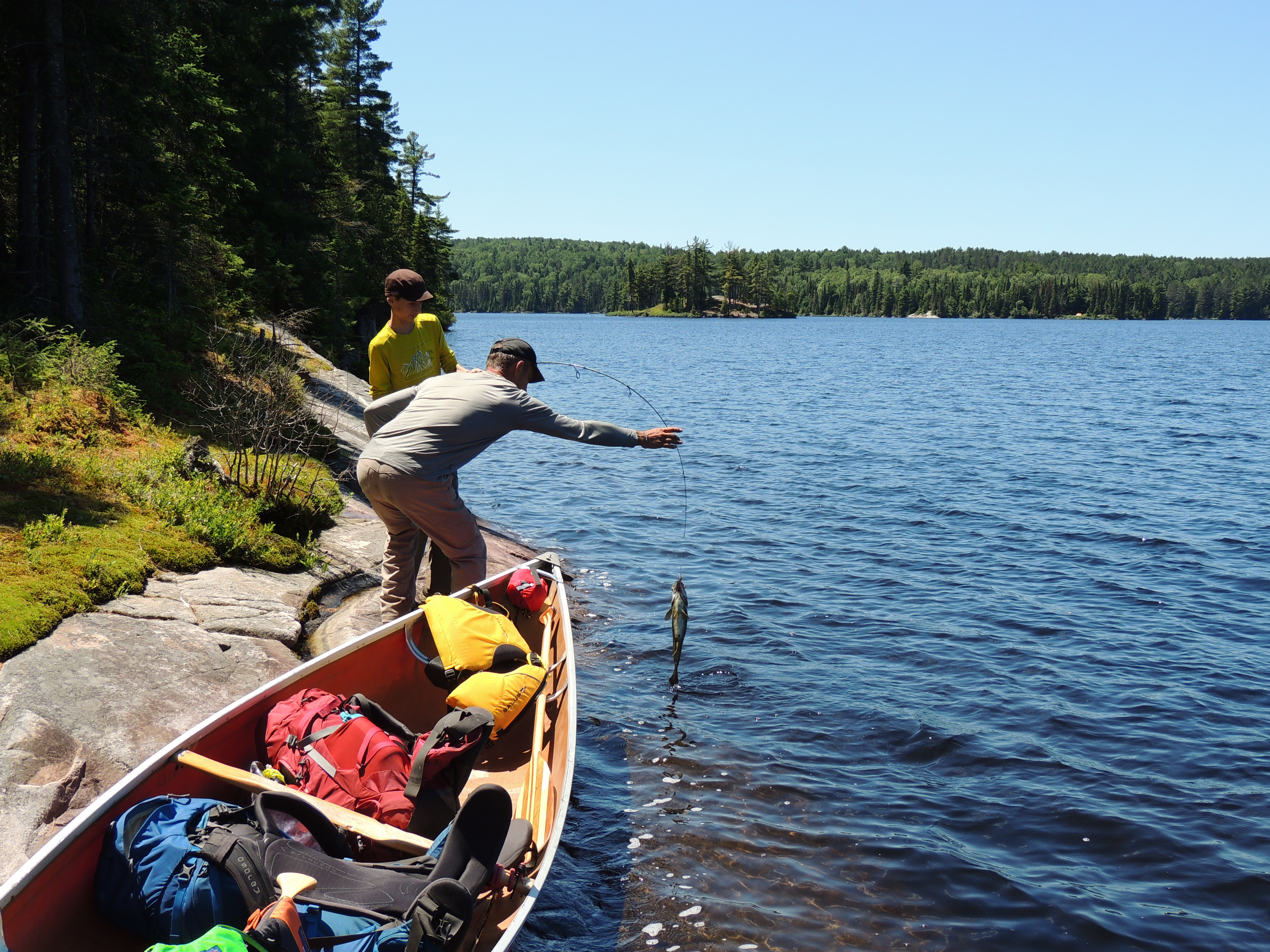Algonquin provincial park scattered dreams gathered for Dream about fish out of water